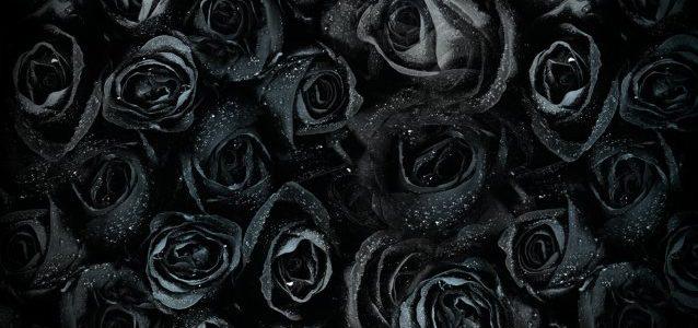 'Tuska20 – The Anniversary Song' Video Feat. Members Of NIGHTWISH, STRATOVARIUS, AMORPHIS, HIM, CHILDREN OF BODOM